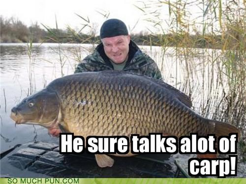 a lot alot carp crap dyslexia FAIL fish insult letters sucking switched talking word - 4213524480