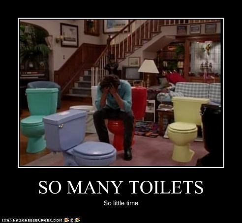 SO MANY TOILETS So little time