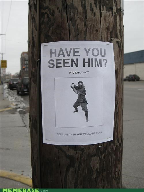 IRL lost ninja sign telephone pole - 4214180352