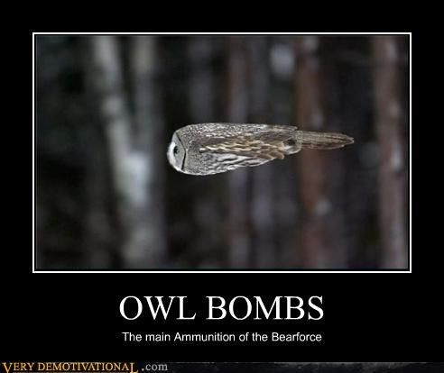 OWL BOMBS The main Ammunition of the Bearforce
