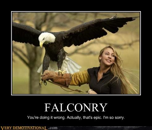 FALCONRY You're doing it wrong. Actually, that's epic. I'm so sorry.