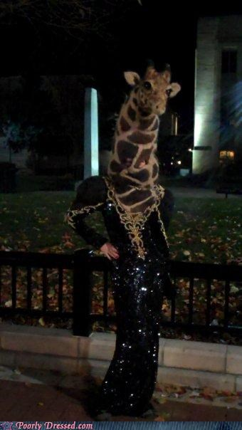 costume fancy giraffes Party wtf