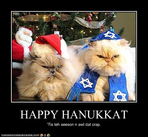 celebrate christmas dressed up grumpy Hall of Fame hanukkah holiday lols 2010 holidays jewish - 4217108736