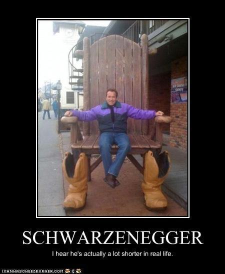 Cheezburger Image 4217939200