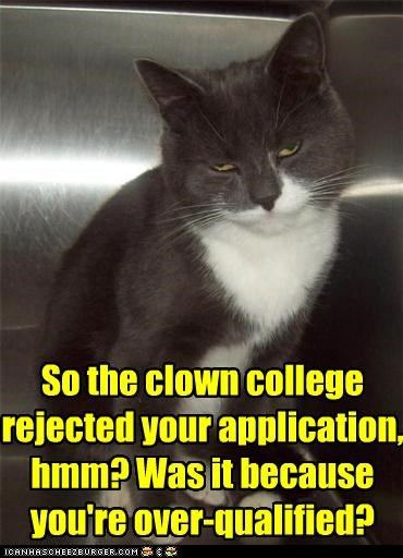 application,caption,captioned,cat,clown,college,evil,mean,question,rejected,sarcasm