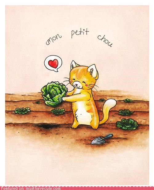 art,cabbage,french,kitten,print,pun