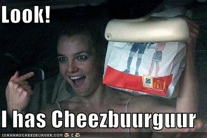 Cheezburger Image 4219295744
