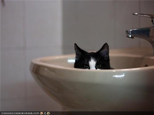 bathroom kitchen package post sinks weird - 4219713280