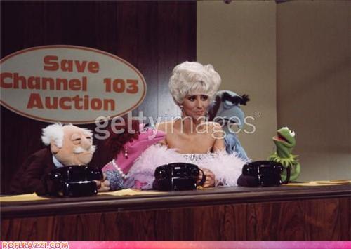 cher,lady gaga,muppet show,Music,TLL
