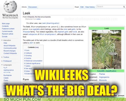 homophones leaks leeks no big deal vegetable vegetables wikileaks - 4223175168