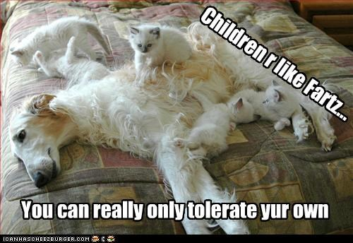 adage,annoying,borzoi,children,farts,Hall of Fame,kitten,ownership,saying,tolerance,tolerate