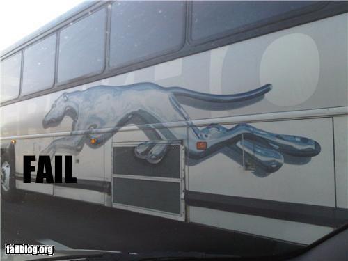 anatomy bus design failboat images legs poor planning - 4223803136
