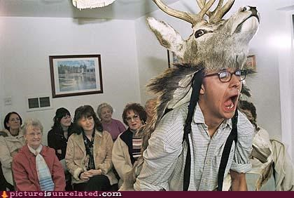 animal-non-human hat head dress lol meeting screaming wtf - 4223944960