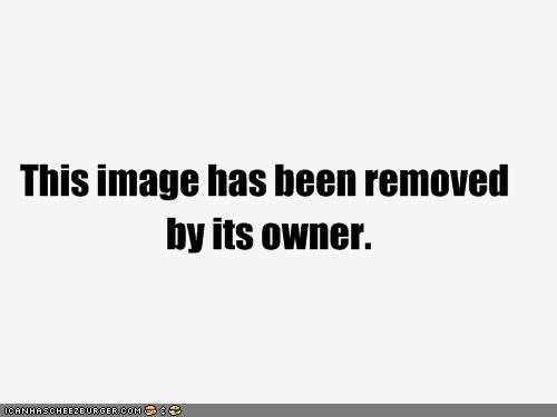Cheezburger Image 4224136448