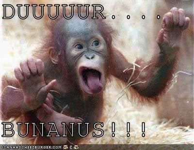baby orangutan bananas critters glass monkey - 4225105920