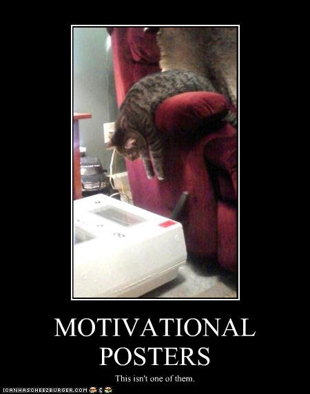 arm,caption,captioned,cat,couch,dissimilar,is not,lazy,motivational,poster,slouching