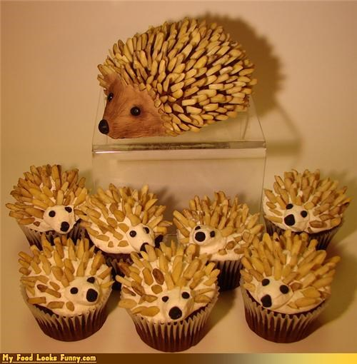 cupcakes,cute,hedgehog cupcakes,hedgehogs,icing,Sweet Treats