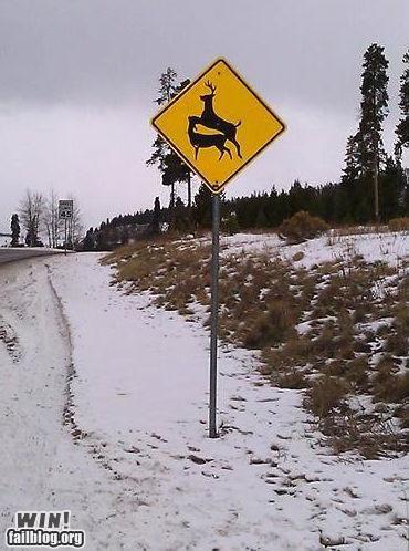 graffiti hacked road signs - 4227212032