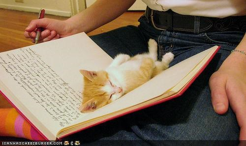 book,cyoot kitteh of teh day,diary,sleep,writing