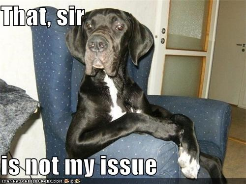 best of the week,chair,great dane,i dont care,matter of fact,not my issue,problem,sitting,uninterested