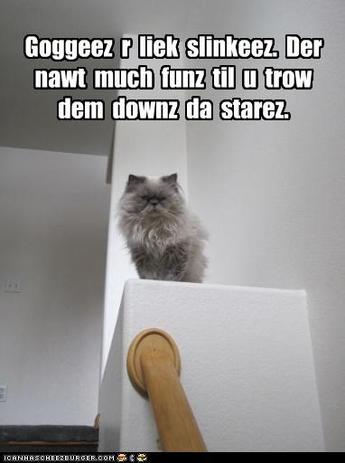 bannister,caption,captioned,cat,comparison,evil,fun,goggies,mean,persian,similar,slinky,staircase,stairs,throwing