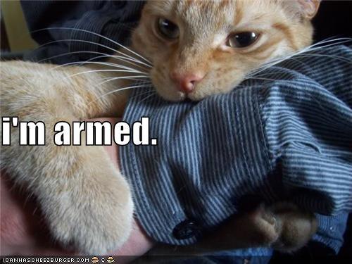 i'm armed.