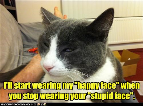 annoyed caption captioned cat contempt deal face Hall of Fame happy proposal stupid