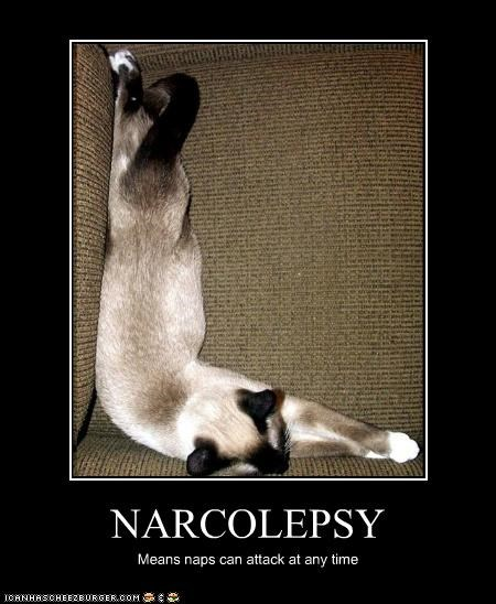 NARCOLEPSY Means naps can attack at any time