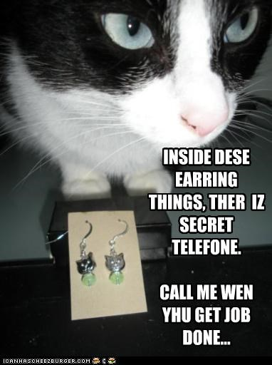 INSIDE DESE EARRING THINGS, THER IZ SECRET TELEFONE. CALL ME WEN YHU GET JOB DONE...