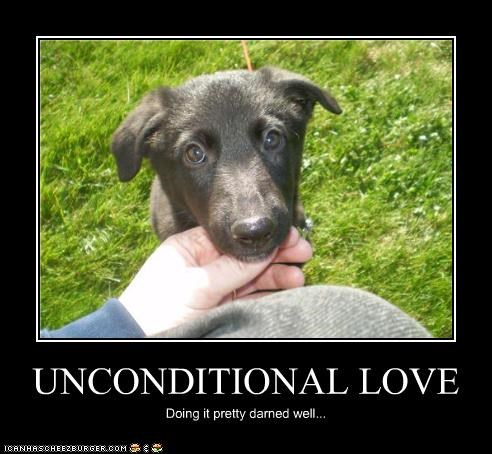 UNCONDITIONAL LOVE Doing it pretty darned well...