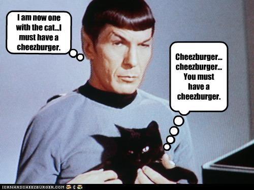 Cheezburger Image 4237422080