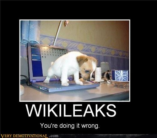 dogs,lol,puns,wikileaks,You are doing it wrong