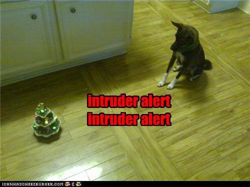 alert blinking chihuahua christmas tree intruder intruder alert lights miniature ornament toy warning - 4238008832