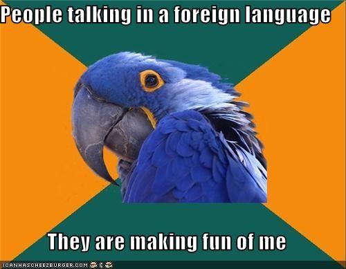 foreign language making fun Paranoid Parrot - 4238237440