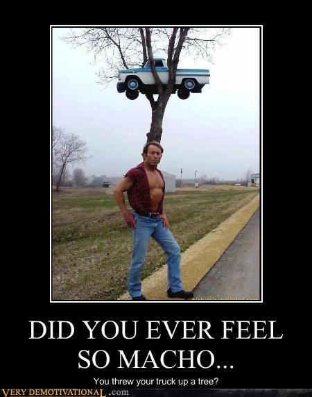 DID YOU EVER FEEL SO MACHO... You threw your truck up a tree?