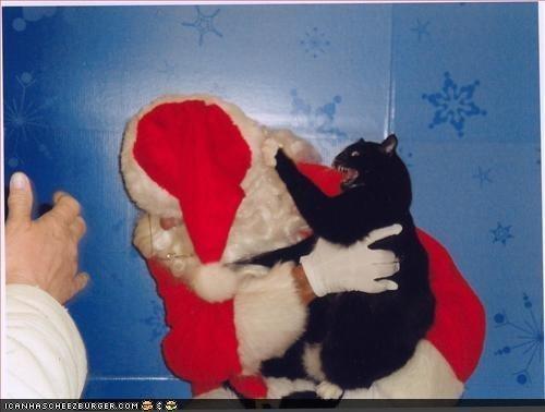 christmas holidays package post santa santa claus winter - 4239351040