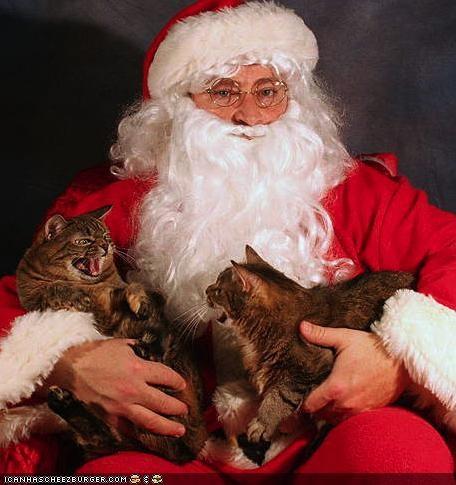 christmas holidays package post santa santa claus winter - 4239355392