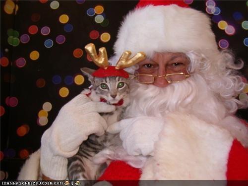 christmas holidays package post santa santa claus winter - 4239355648
