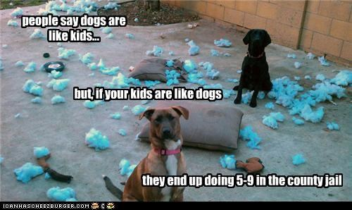 people say dogs are like kids... they end up doing 5-9 in the county jail but, if your kids are like dogs