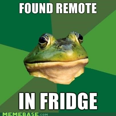 foul bachelor frog,fridge,tv remote