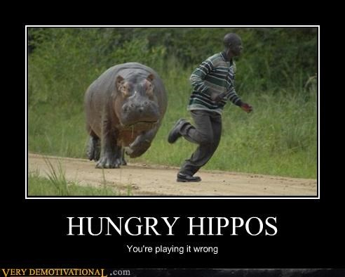 childhood,danger,games,hippopotamus,hippos,You are doing it wrong