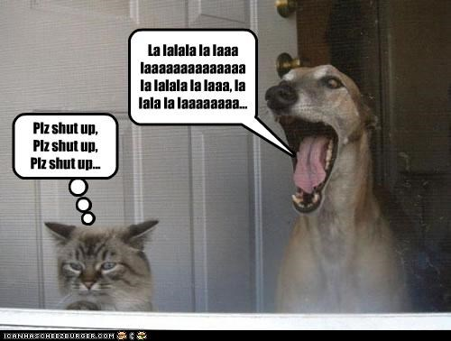annoying,bothering,cat,please,shut up,singing,upset,whippet