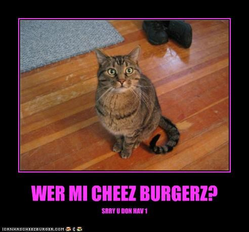 Cheezburger Image 4243809024