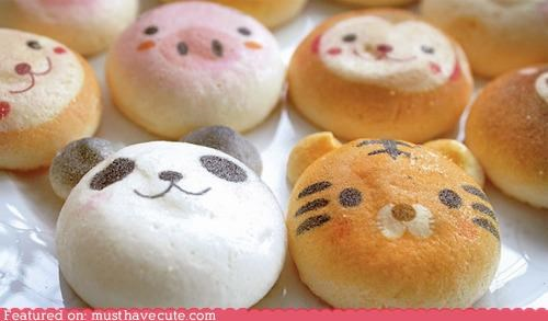animals buns epicute faces too cute to eat - 4244304128