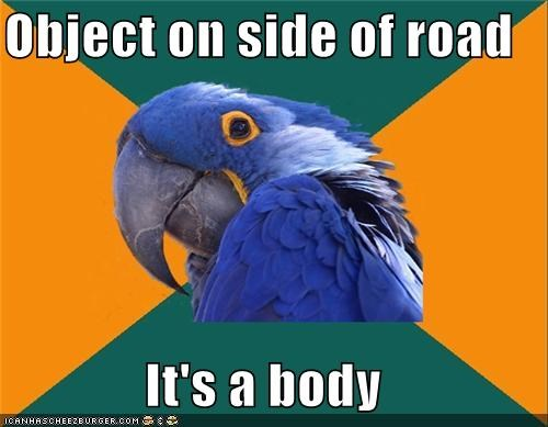 object,Paranoid Parrot,road