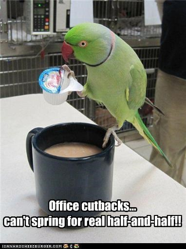 Office cutbacks... can't spring for real half-and-half!!