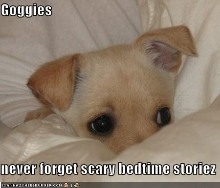 afraid bed bedtime stories blanket cowering cuddling never forget puppy remember scared scary whatbreed