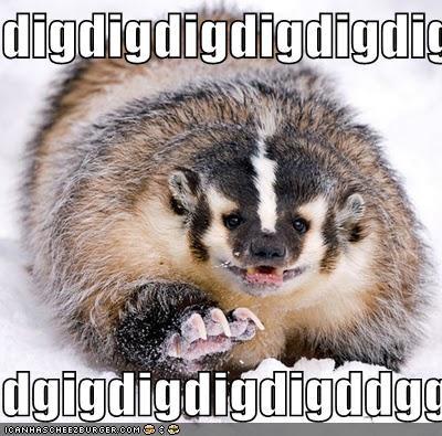 badger badger badger critters derpderpderp dig diglett mushroom - 4246717184