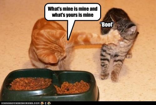 What's mine is mine and what's yours is mine *Boof*