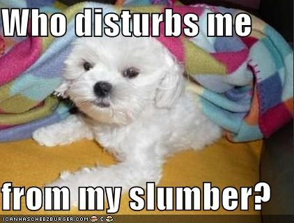 Who disturbs me from my slumber?